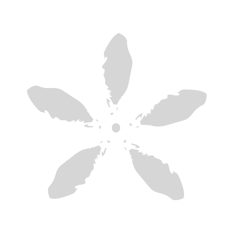 BUK. DALIA X 9  / 3899