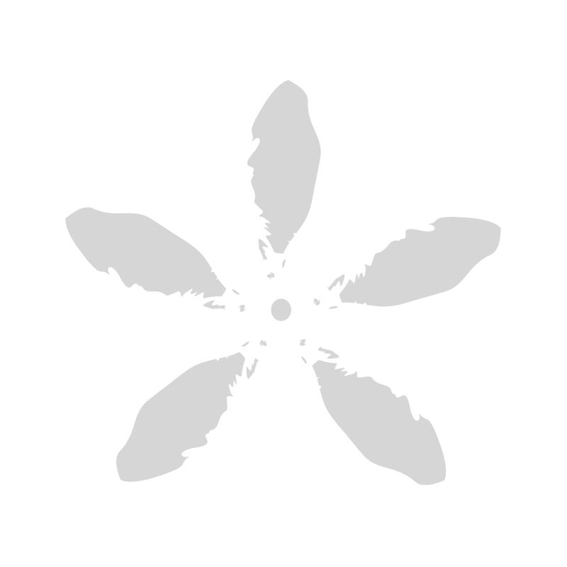 BUK. CALLA (MP) X 9 / 7430